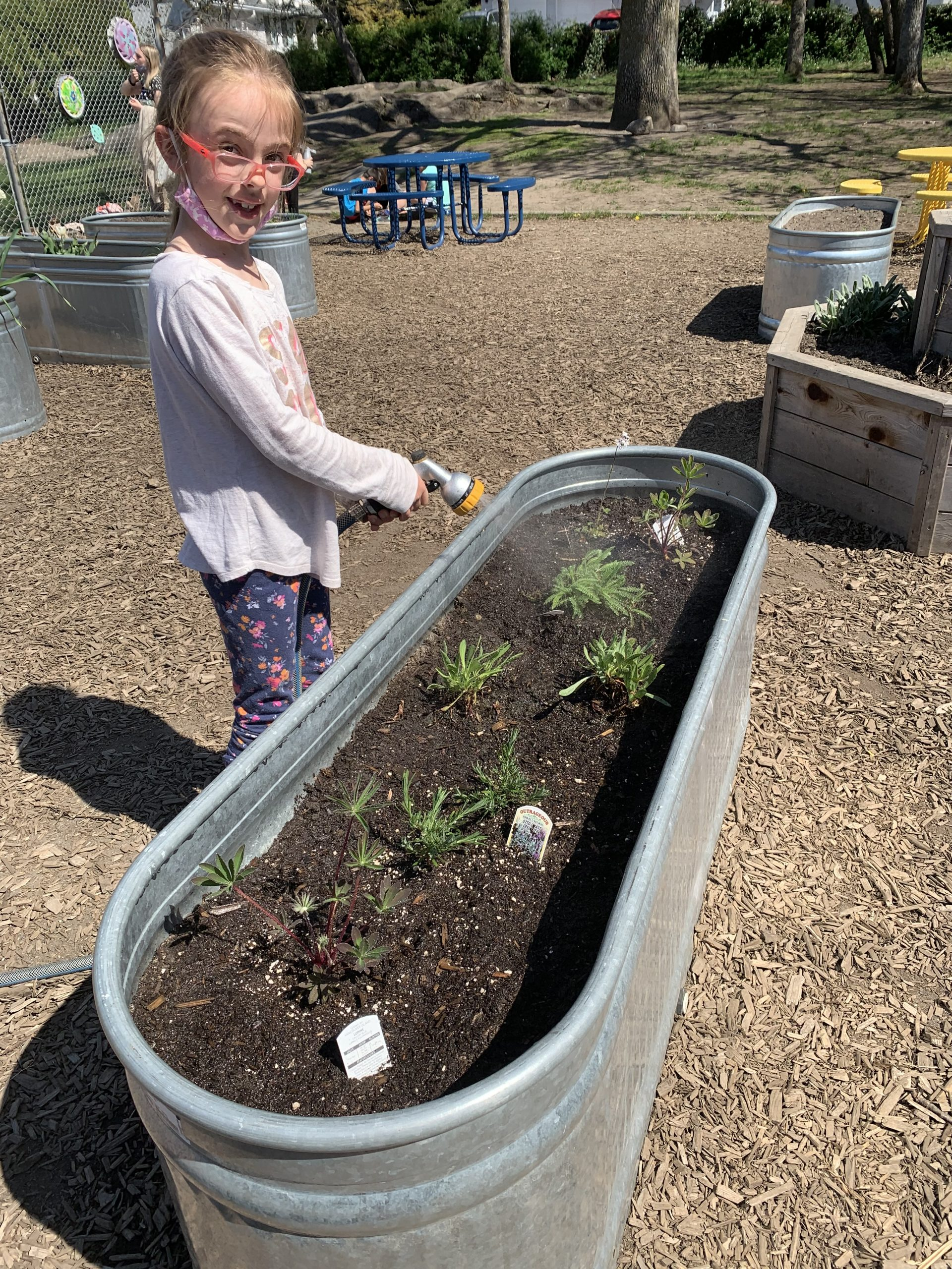 Quadra students are enjoying mindful moments while taking care of our school garden boxes!